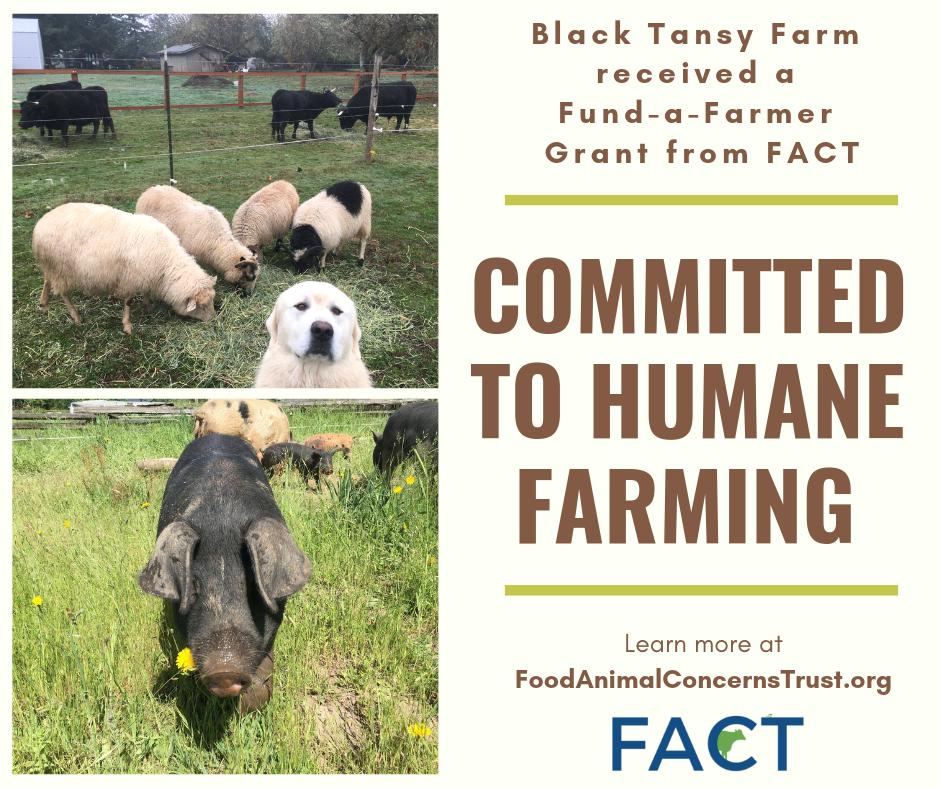 Fund-a-Farmer grant for humane farming
